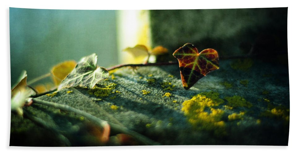 Gravestone Bath Sheet featuring the photograph After Life by Rebecca Sherman