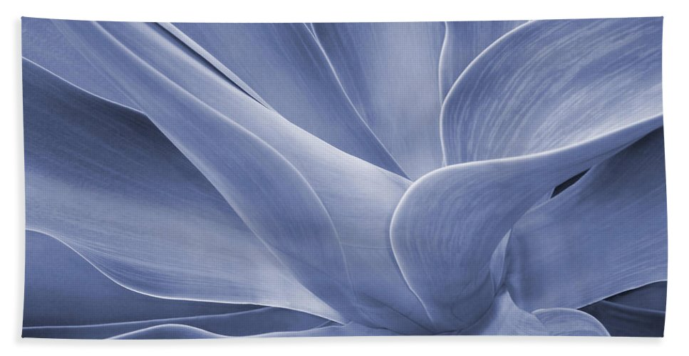 Agave Hand Towel featuring the photograph Agave In Blue by Bel Menpes