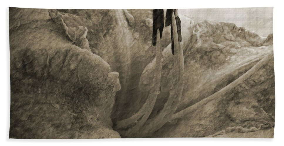 Nature Bath Sheet featuring the photograph Aged Daylily by Debbie Portwood
