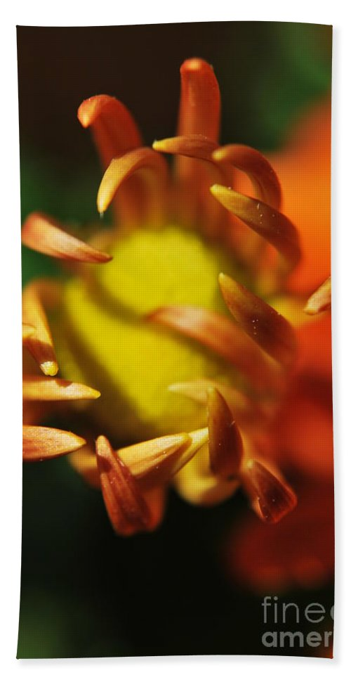 Yhun Suarez Hand Towel featuring the photograph Alien Flower by Yhun Suarez