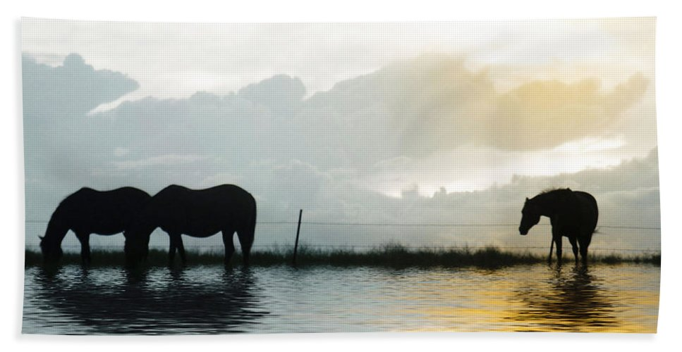 Horse Bath Towel featuring the photograph Alone by Susan Kinney