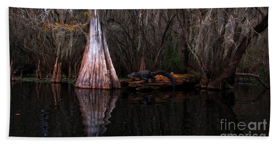 American Alligator Bath Towel featuring the photograph Along The Hillsborough River by Barbara Bowen