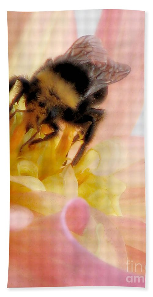 Bee Hand Towel featuring the photograph Ambrosia by Rory Sagner
