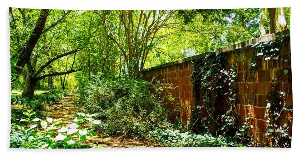 Paths Bath Sheet featuring the photograph Ancient Path by Shannon Harrington