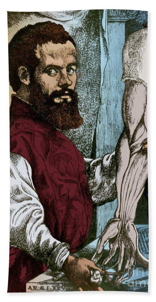 History Hand Towel featuring the photograph Andreas Vesalius, Flemish Anatomist by Science Source