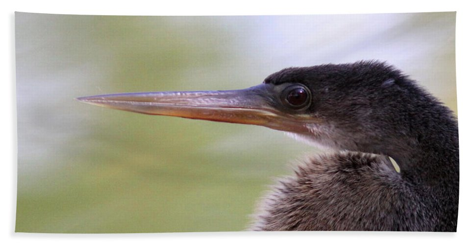 Anhinga Bath Sheet featuring the photograph Anhinga - The Emperor by Travis Truelove