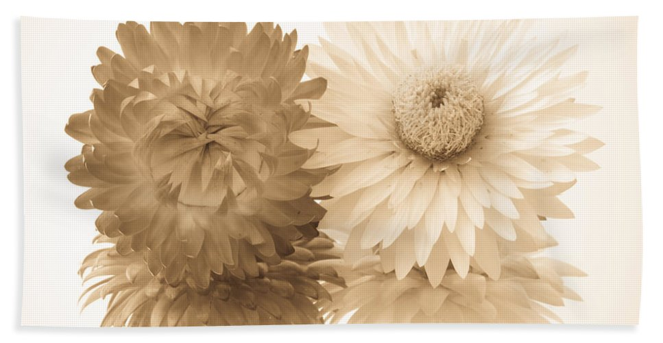 Abstract Hand Towel featuring the photograph Antique Floral Duo by Heidi Smith