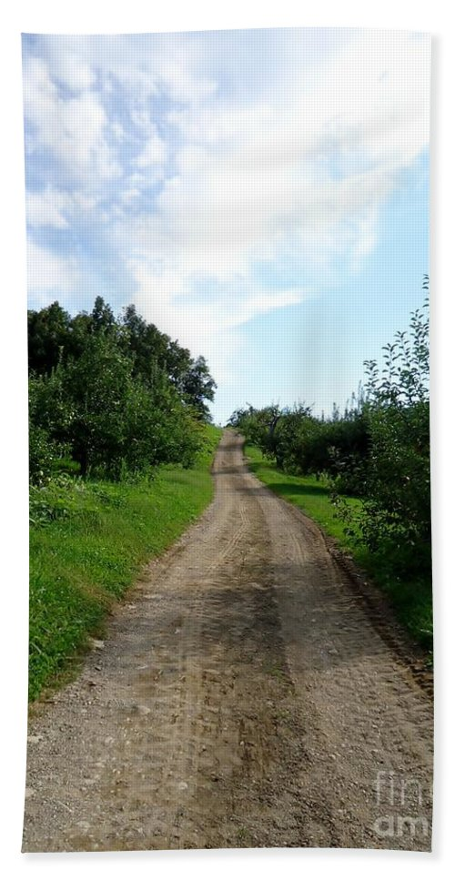 Trail Hand Towel featuring the photograph Apple Fields by Art Dingo