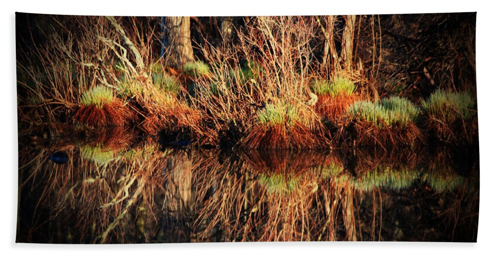 Pond Hand Towel featuring the photograph April's Pond by Karol Livote