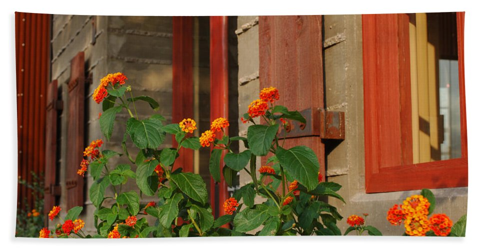 Architectural Detail Bath Sheet featuring the photograph Architectural Detail 2 by Jill Reger