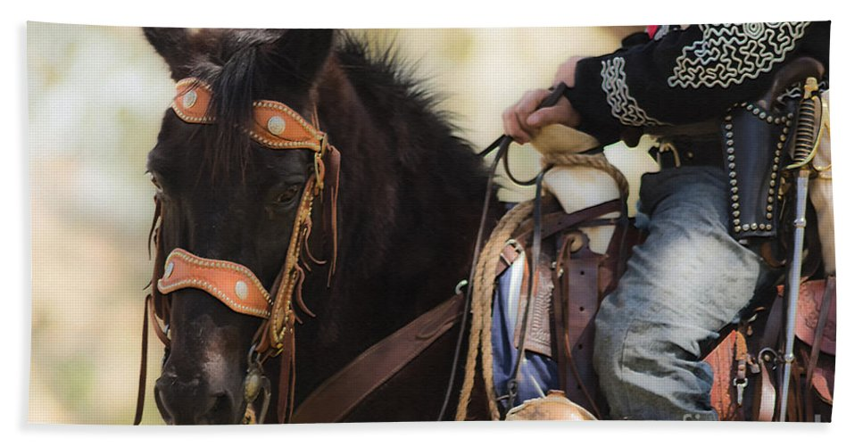 Horse Bath Sheet featuring the mixed media Armament Detail by Kim Henderson