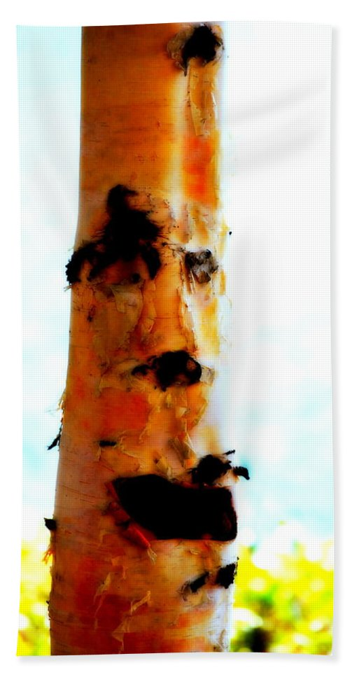 Water Hand Towel featuring the photograph Aspen Face by Kathy Sampson