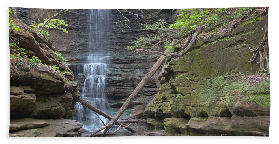Water Hand Towel featuring the photograph At The Falls by David Arment