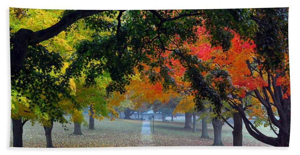 Landscapes Bath Sheet featuring the photograph Autumn Canopy by Lisa Phillips