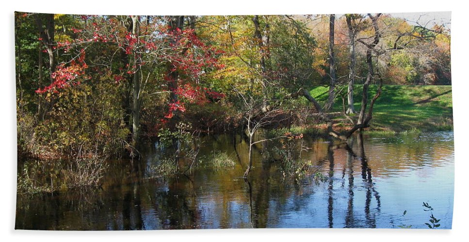 Pond Bath Sheet featuring the photograph Autumn Colors On The Pond by Nancy Patterson