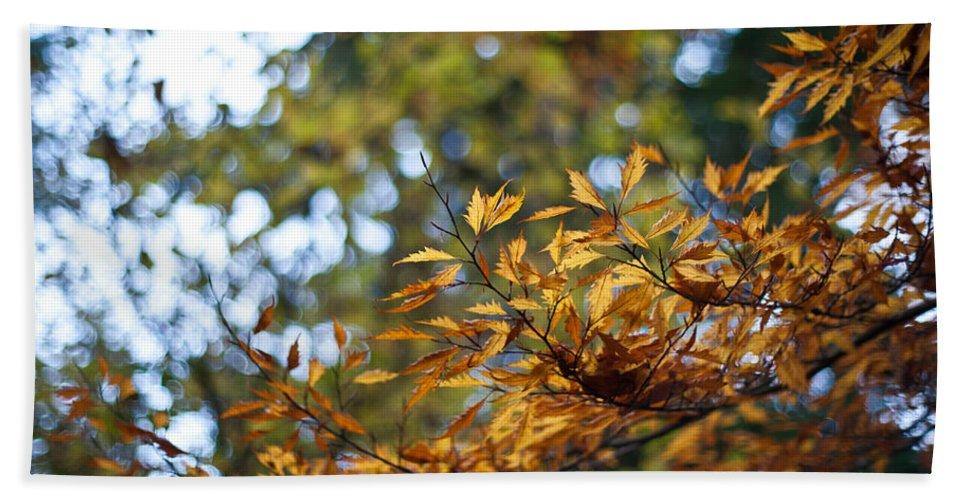 Autumn Bath Sheet featuring the photograph Autumn Crescendo by Mike Reid