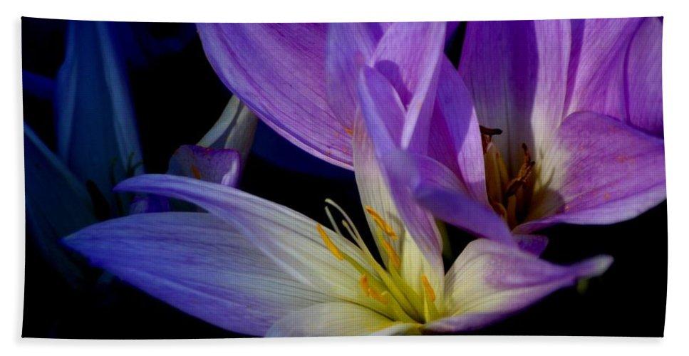 Floral Bath Sheet featuring the photograph Autumn Crocus by Living Color Photography Lorraine Lynch