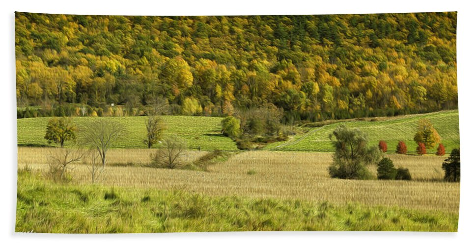 Landscape Hand Towel featuring the photograph Autumn Farm Vista by Fran Gallogly
