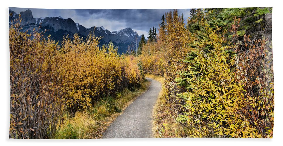Trees Hand Towel featuring the photograph Autumn In Alberta by Tara Turner