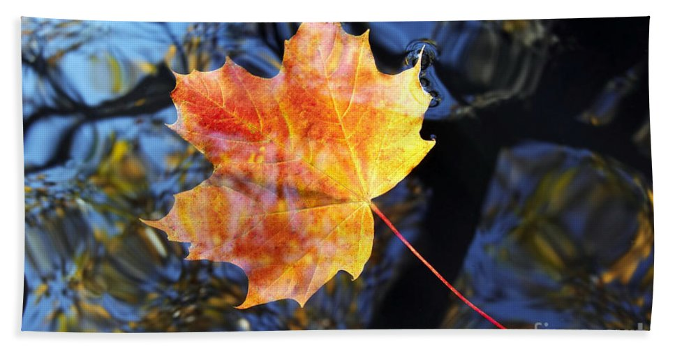 Leaf Hand Towel featuring the photograph Autumn Leaf On The Water Level by Michal Boubin