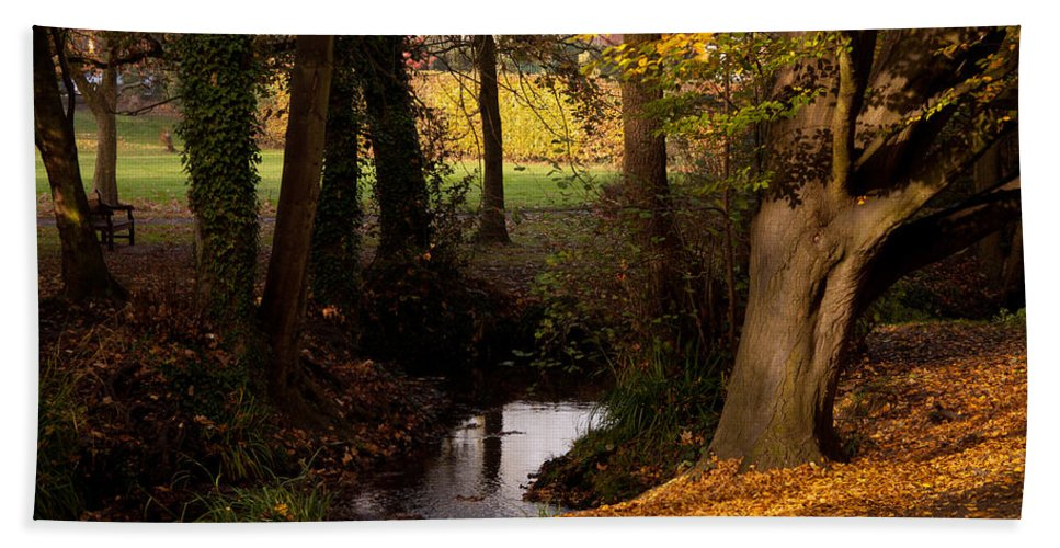 Sunlight Bath Sheet featuring the photograph Autumn Leaves by Dawn OConnor