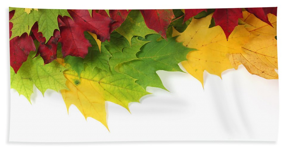 Autumn Hand Towel featuring the photograph Autumn Leaves In Colour by Simon Bratt Photography LRPS