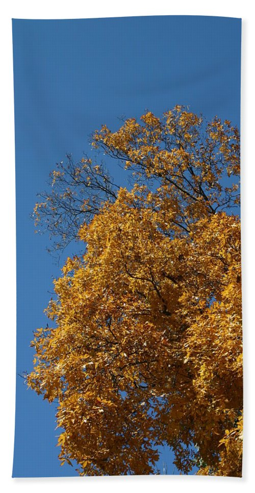 Nature Bath Sheet featuring the photograph Autumn Leaves In Tn by Leann DeBord