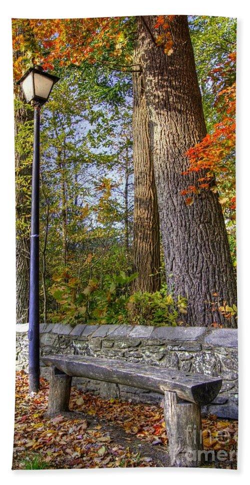 Autumn Landscape Hand Towel featuring the photograph Autumn Light by Benanne Stiens
