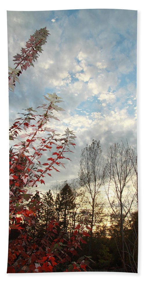 Autumn Hand Towel featuring the photograph Autumn Maple And Sky by Mick Anderson