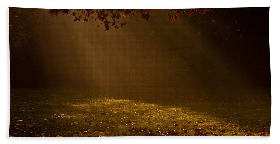 Sunlight Bath Sheet featuring the photograph Autumn Mist by Dawn OConnor