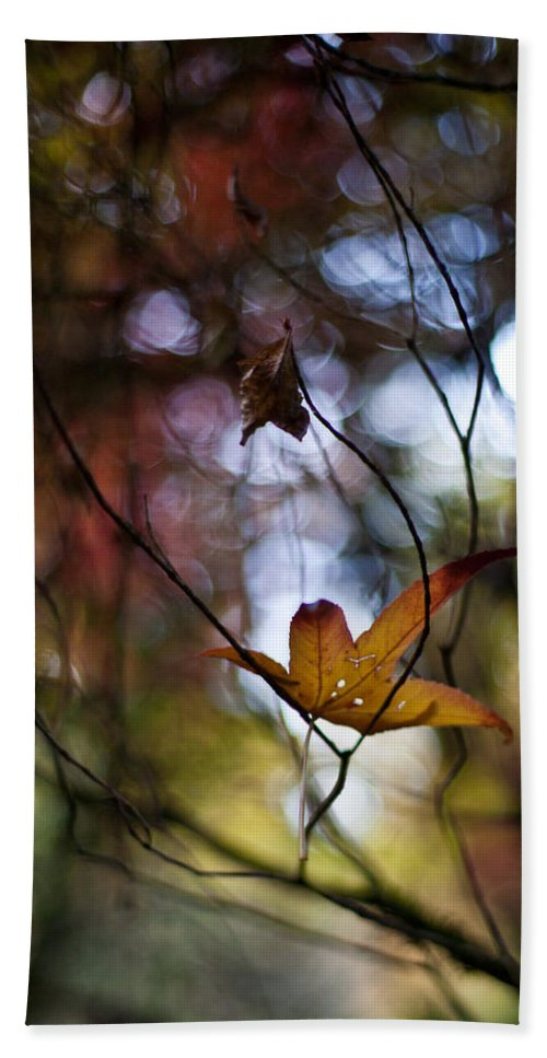 Leaves Bath Sheet featuring the photograph Autumn Mystere by Mike Reid