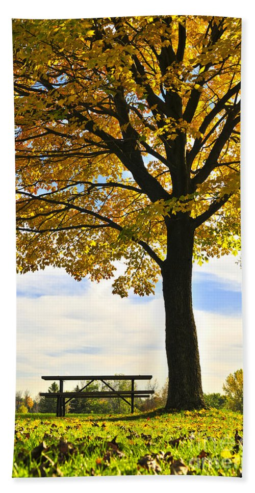 Fall Hand Towel featuring the photograph Autumn Park by Elena Elisseeva