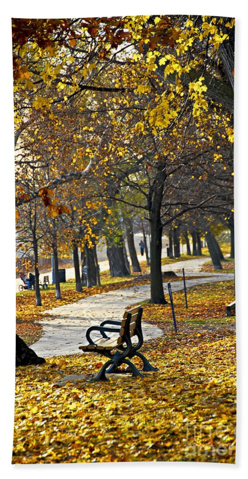 Park Hand Towel featuring the photograph Autumn Park In Toronto by Elena Elisseeva