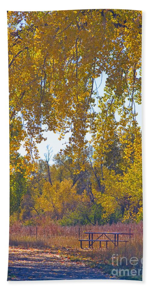 Picnic Hand Towel featuring the photograph Autumn Picnic Spot by James BO Insogna