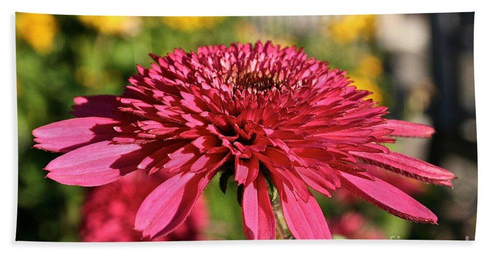 Outdoors Bath Sheet featuring the photograph Autumn Pink by Susan Herber