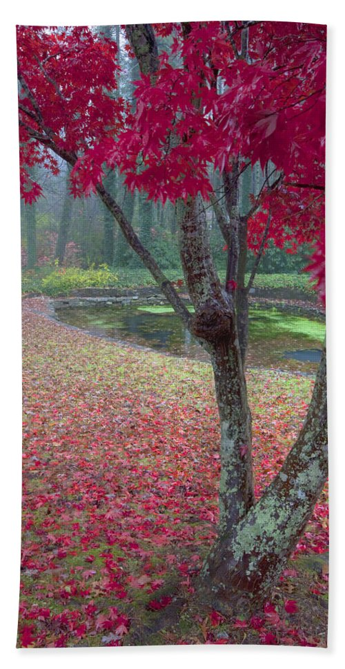 Red Photographs Bath Sheet featuring the photograph Autumn Red by Rob Travis
