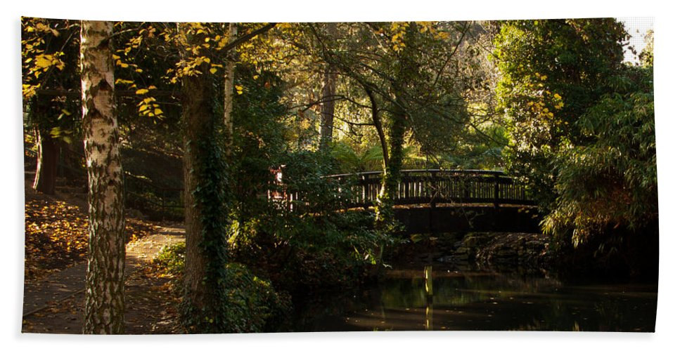 Sunlight Bath Sheet featuring the photograph Autumn Reflections by Dawn OConnor