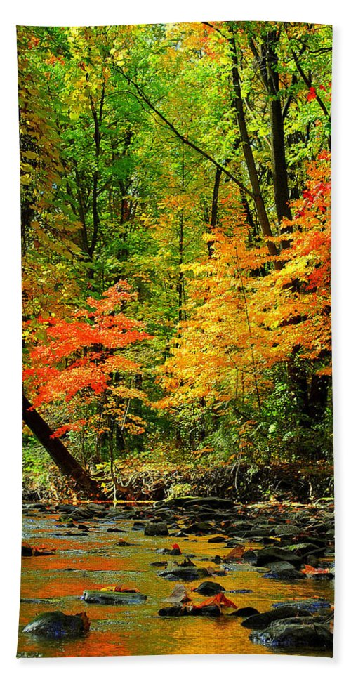 Autumn Bath Sheet featuring the photograph Autumn Reflects by Frozen in Time Fine Art Photography