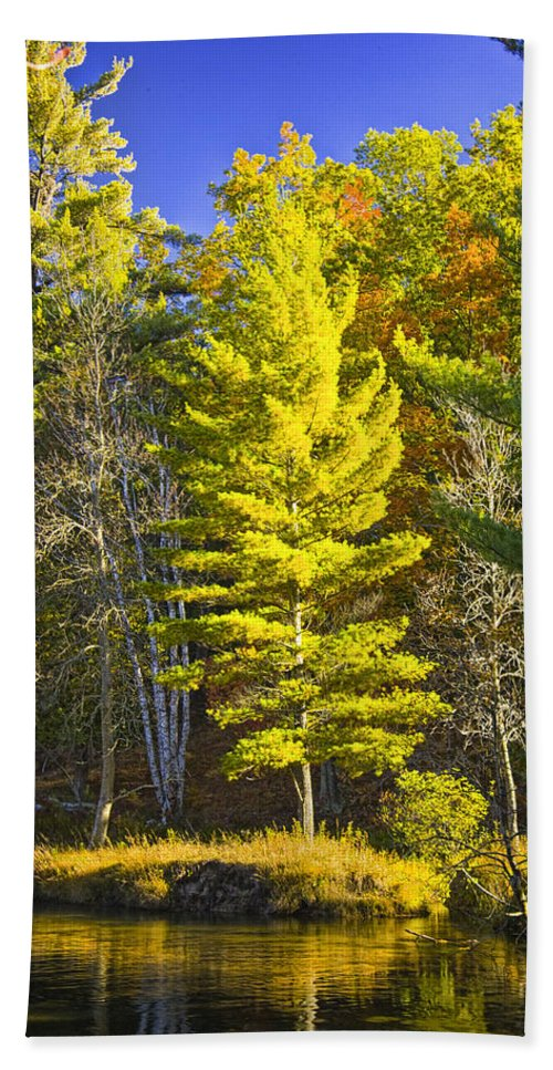 Art Bath Sheet featuring the photograph Autumn Scene Of Colorful Trees On The Little Manistee River In Michigan No. 0855 by Randall Nyhof