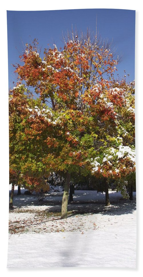 Landscape Bath Sheet featuring the photograph Autumn Snow by Michelle Welles