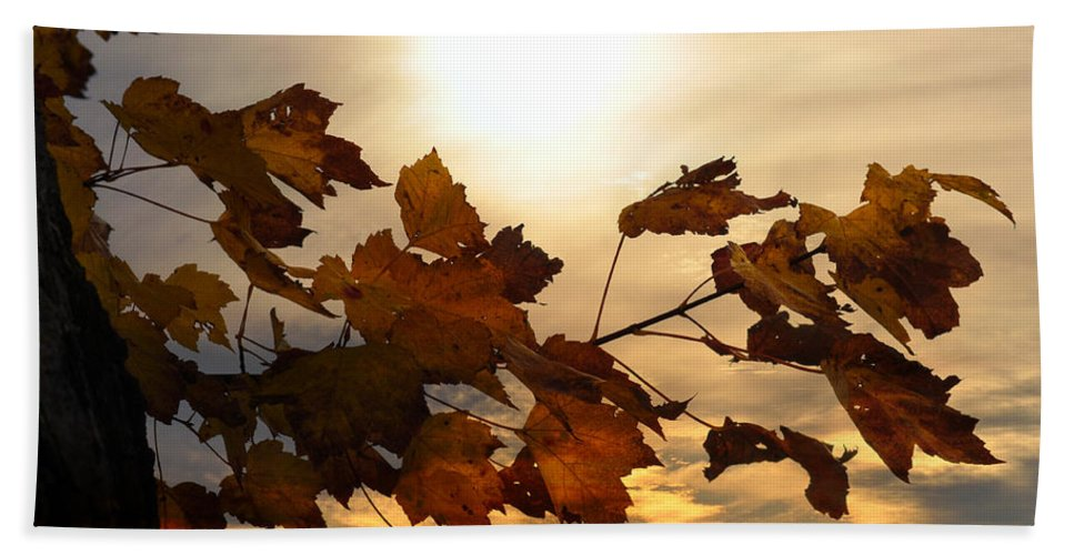 Autumn Bath Sheet featuring the photograph Autumn Splendor by Bill Cannon