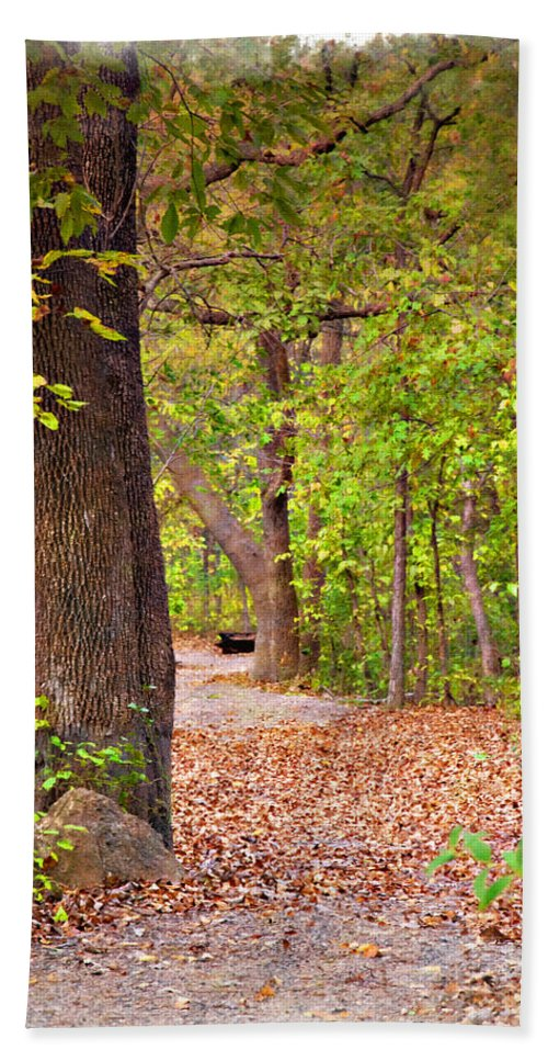 Autumn Hand Towel featuring the photograph Autumn Walk - Impressions by Ricky Barnard