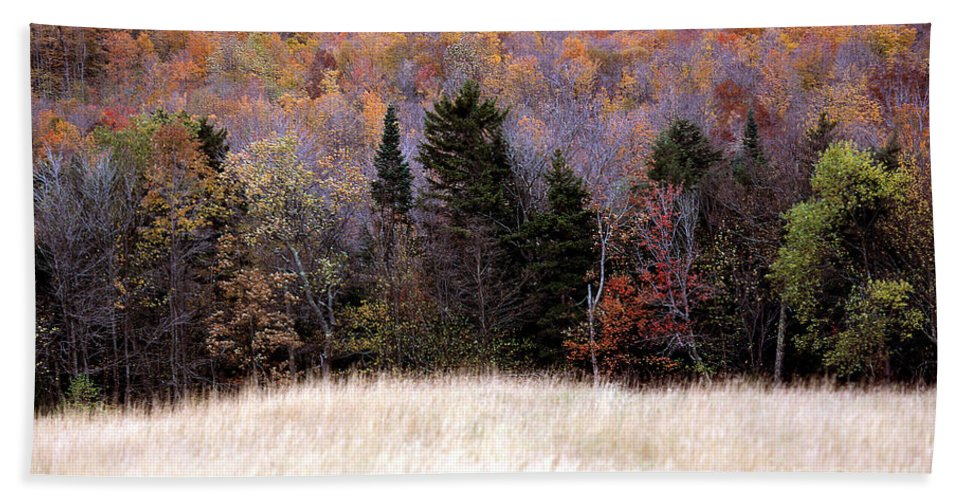 Autumn Bath Sheet featuring the photograph Autumnfield 2 by Mike Nellums