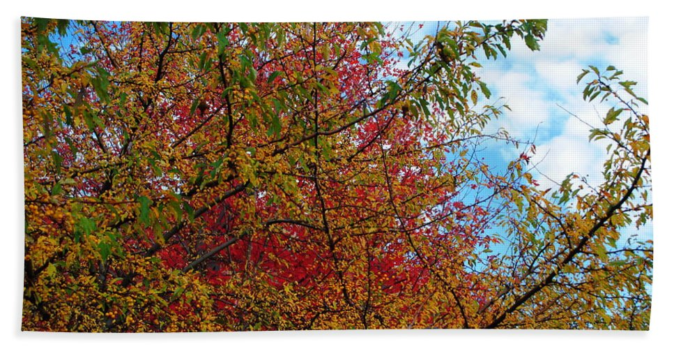 Bath Sheet featuring the photograph Autumns Beauty by Michael Frank Jr