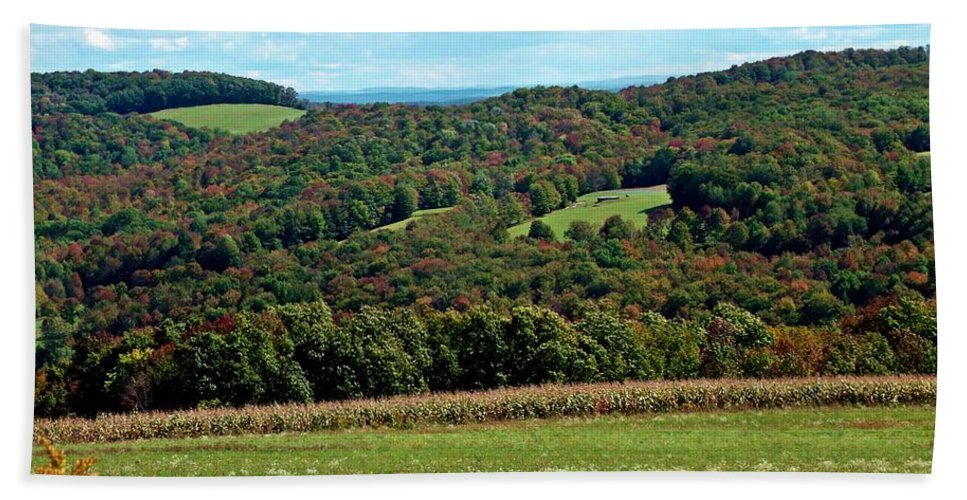 New York Hand Towel featuring the photograph Autumns First Blush by Christian Mattison