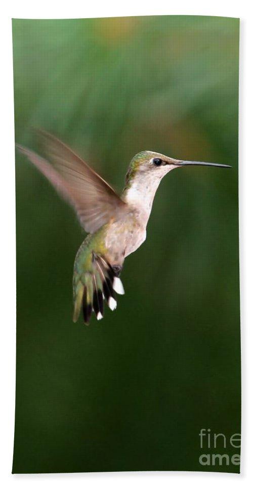 Hummer Bath Sheet featuring the photograph Awesome Hummingbird by Sabrina L Ryan