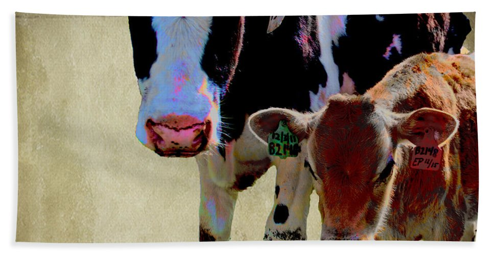 Cows Bath Sheet featuring the photograph B1308 With B2148 by Paulette B Wright