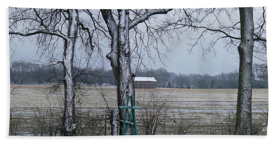 Tn Hand Towel featuring the photograph Backyard Panoramic by Ericamaxine Price