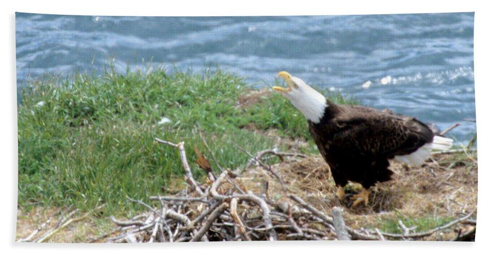 Bald Eagle Bath Sheet featuring the photograph Bald Eagle Calling by Larry Allan