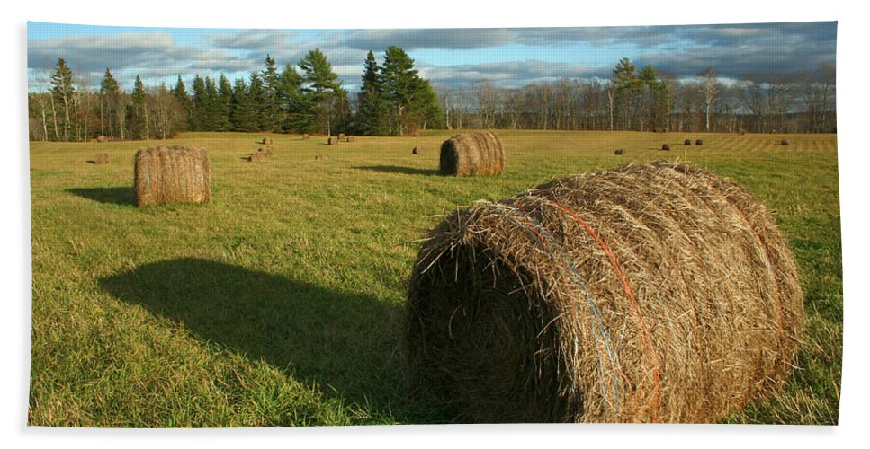 Hay Bath Sheet featuring the photograph Bales by Jeff Galbraith